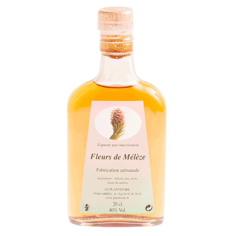 flask de liqueur de mélèze préparé par Le Plantivore dans les Hautes-alpes
